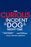 Curious Incident - 100x150